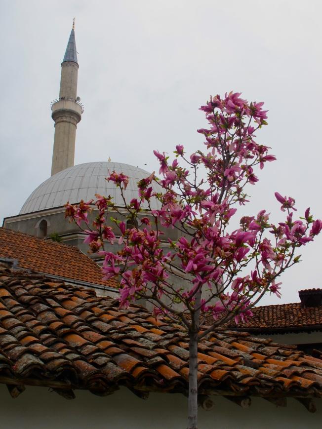 Gazi Mehmet Pasha mosque