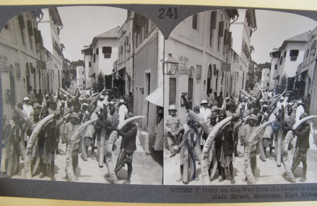 Mombasa stereograph