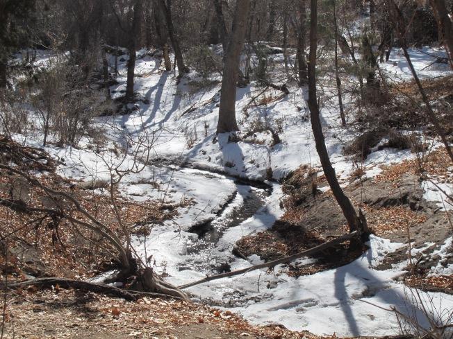 Frijoles Creek