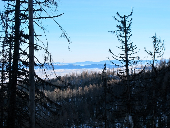 Hrebienok trail