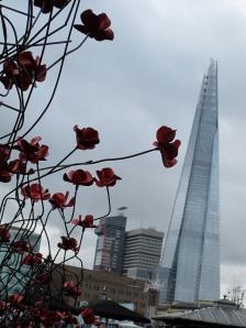 London poppies
